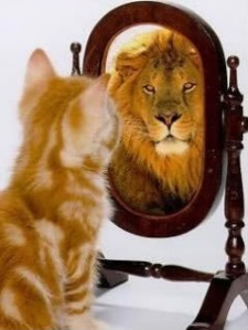 kitten_lion_mirror
